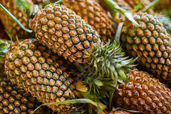 Fruit Background. Organic Pineapples At Market. Nutrition. Healt Royalty Free Stock Image