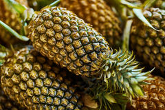 Fruit Background. Organic Pineapples At Market. Nutrition. Healt Stock Images