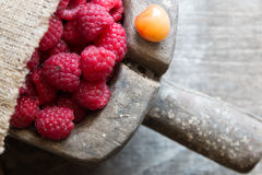 Fruit background. Ripe raspberry and cherries Royalty Free Stock Image