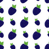 Fruit background Seamless pattern with hand drawn skech blackberry vector illustration Stock Photos