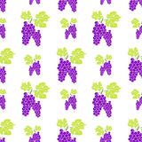 Fruit background Seamless pattern with hand drawn skech grape vector illustration Royalty Free Stock Photo