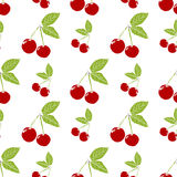 Fruit background Seamless pattern with hand drawn sketch cherry vector illustration Royalty Free Stock Images