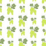 Fruit background Seamless pattern with hand drawn sketch green grape vector illustration Stock Photos