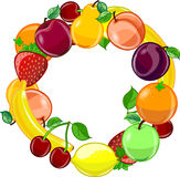 Fruit background vector Stock Photos