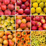Fruit backgrounds Stock Image