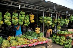 Fruit, Banana Paradise , the market in Asia Stock Images