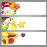 Fruit banners Stock Photography