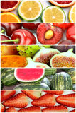 Fruit banners collage Royalty Free Stock Image