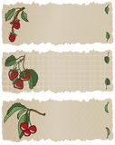Fruit Banners RSC. Vector art in Illustrator 8. Three delicious fruits hand drawn in a loose graphic style on a torn paper banner. All elements on separate Stock Images