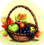 Fruit basket. Delicious fruits in a basket Stock Photos