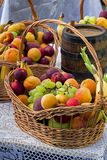 Fruit basket. View of some fruit baskets on a table Royalty Free Stock Photography