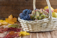 Fruit are in a basket.  royalty free stock images