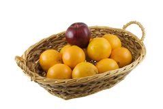 Fruit Basket. Wicker basket of oranges and one apple isolated on white Stock Photos