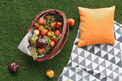 Fruit basket on artificial grass Royalty Free Stock Photos