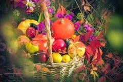 Fruit Basket Autumn Garden Royalty Free Stock Photography