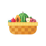 Fruit basket  (blueberry, garnet, watermelon, apple and grape). Modern flat design. Royalty Free Stock Images