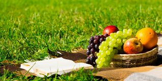 Fruit basket and a book on a green lawn for relaxing stock photo