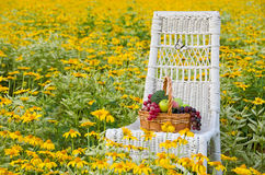 Fruit basket on chair in flower field Royalty Free Stock Image