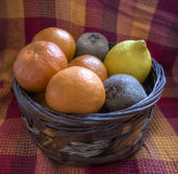 Fruit Basket. A basket filled with citruses Stock Photos
