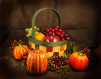 Fruit Basket, Flowers and Pumkins Stock Image