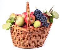 Fruit in the basket. Stock Photos