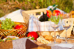 Fruit basket on the green grass. Picnic theme. Royalty Free Stock Photo