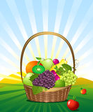 Fruit basket in the meadow Royalty Free Stock Images