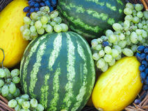 Fruit basket with melon, watermelon grapes,on straw Royalty Free Stock Photos