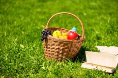 A fruit basket and an open book on a green lawn Stock Image