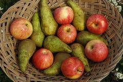 fruit on basket outdoors Stock Photos