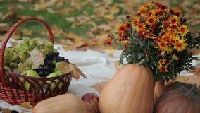 Fruit Basket and Pumpkins stock footage