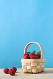 Fruit Basket of Raspberries Royalty Free Stock Photos