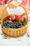 Fruit in a basket Royalty Free Stock Image