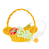 Fruit basket vector. Fruit basket and apple peach grapes apricot vector without gradients vector illustration