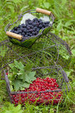 Fruit in baskets Royalty Free Stock Image