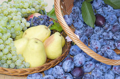 Fruit baskets. Fresh plums, grapes and pears in wooden baskets Royalty Free Stock Photography