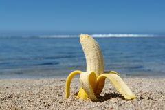 Fruit on the beach, banana Royalty Free Stock Image