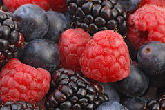 Fruit - berries 2 Royalty Free Stock Photo
