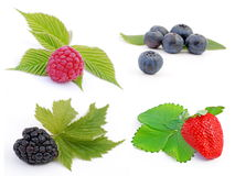 Fruit - berries Stock Photography
