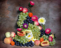 Fruit, Berries And Flowers Stock Photos
