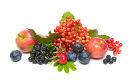 Fruit and berries close-up isolated on white background Royalty Free Stock Photos