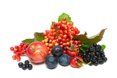 Fruit and berries close up on a white background Stock Images