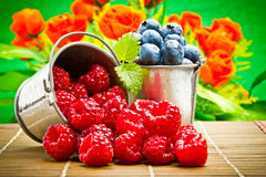 Fruit berries in metal small pail Stock Photos