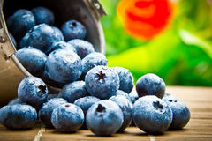 Fruit berries in metal small pail. Delicious fruit berries in metal small pail royalty free stock image