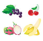 Fruit and berry. Different fruit and berry. banana, cherry, dragon fruit, currant Stock Photos