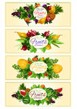 Fruit and berry banner set for food design Stock Photo
