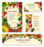 Fruit, berry banner template set for food design Royalty Free Stock Images