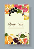 Fruit and berry banner Stock Photography