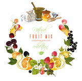Fruit and berry banner Stock Image