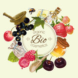 Fruit and berry banner Royalty Free Stock Photo